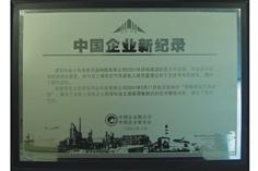中国企业新纪录